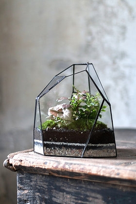 Rastlinné terárium 'Tiffany' M