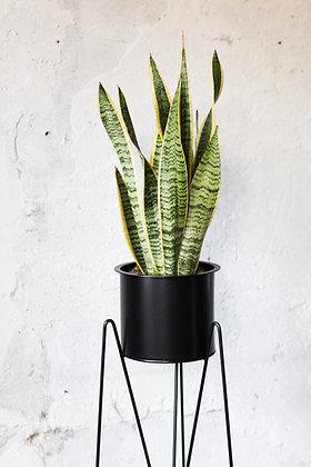 set Bati, kovový stojan+kovový obal na rastliny