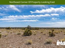 Northeast Corner Of Property Looking Eas
