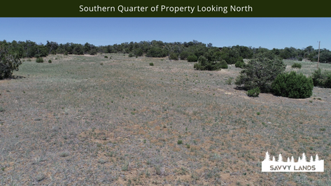 Southern Quarter of Property Looking Nor