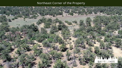 Northeast Corner of the Property.png
