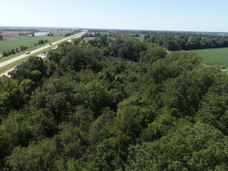 North to South Treetop View.JPG