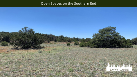 Open Spaces on the Southern End.png