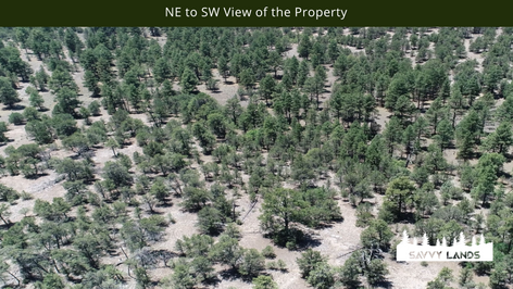 NE to SW View of the Property.png