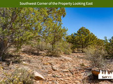 Southwest Corner of the Property Looking