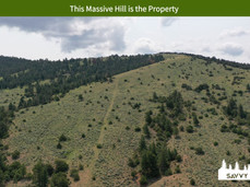 This Massive Hill is the Property.jpeg