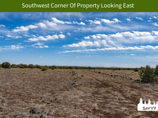 Southwest Corner Of Property Looking Eas