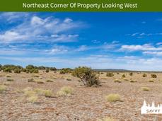 Northeast Corner Of Property Looking Wes