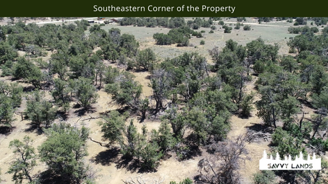 Southeastern Corner of the Property.png