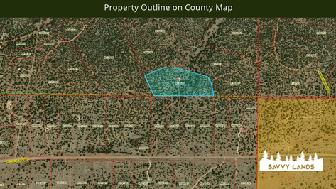 Property Outline on County Map.png