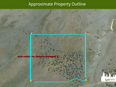 Approximate Property Outline.png