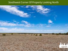 Southwest Corner Of Property Looking Nor