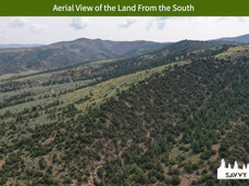 Aerial View of the Land From the South.jpeg