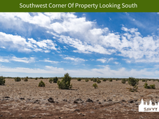 Southwest Corner Of Property Looking Sou