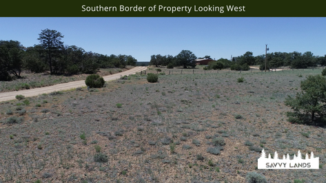 Southern Border of Property Looking West