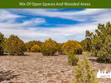 Mix Of Open Spaces And Wooded Areas.png