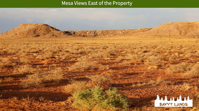 Mesa Views East of the Property_edited.j