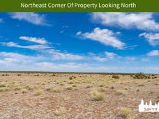 Northeast Corner Of Property Looking Nor