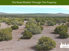 The Road Bladed Through The Property.png
