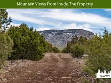 Mountain Views From Inside The Property.