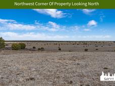 Northwest Corner Of Property Looking Nor