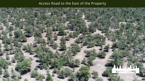 Access Road to the East of the Property.