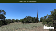 Power Pole on the Property.png