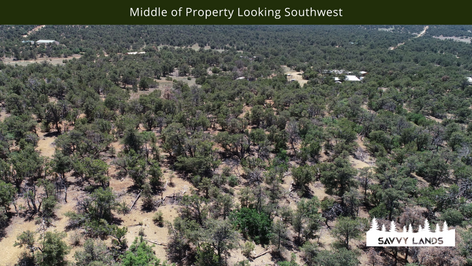 Middle of Property Looking Southwest.png