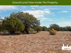 Ground Level View Inside The Property.pn