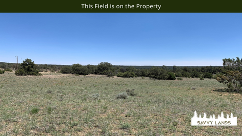 This Field is on the Property.png