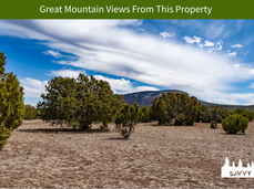 Great Mountain Views From This Property.