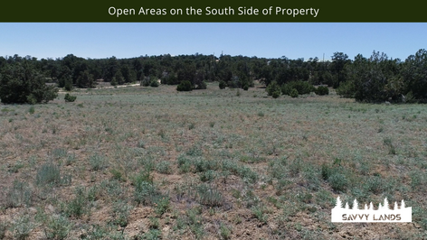 Open Areas on the South Side of Property