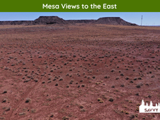 Mesa Views to the East.png