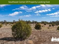 Southeast Corner Of Property Looking Eas