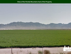 View of the Florida Mountains East of th
