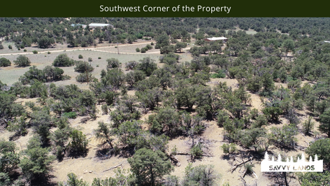 Southwest Corner of the Property.png