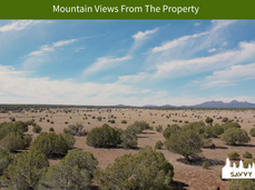 Mountain Views From The Property.png