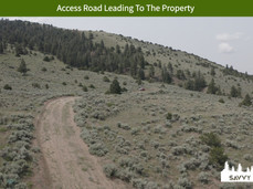 Access Road Leading To The Property.jpeg