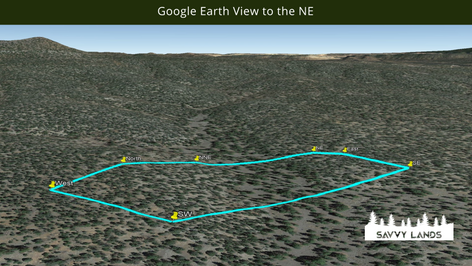 Google Earth View to the NE.png