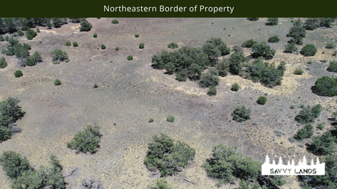 Northeastern Border of Property.png