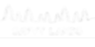 Savvy Lands Logo - White PNG.png