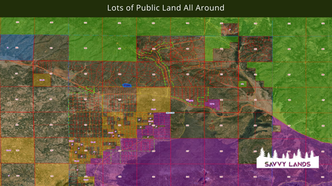 Lots of Public Land All Around.png