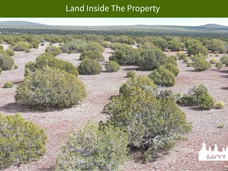 Land Inside The Property.png