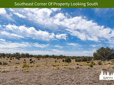 Southeast Corner Of Property Looking Sou