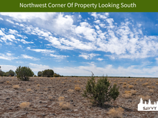 Northwest Corner Of Property Looking Sou