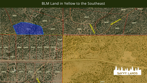 BLM Land in Yellow to the Southeast.png