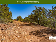 Road Leading to the Property.jpeg