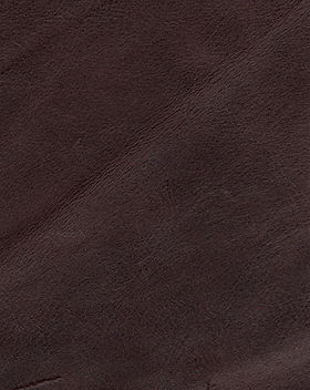 AQUILA - Dark Brown_edited.jpg