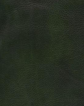 HANDMADE VACCHETTA - Dark Green_edited.jpg
