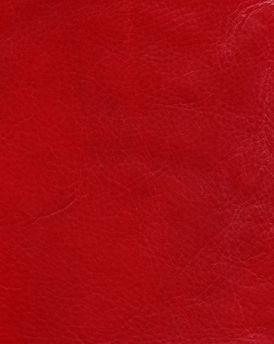 HANDMADE VACCHETTA - Cherry Red_edited.jpg